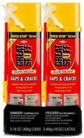 2-Pack 16oz. Great Stuff Gaps and Cracks Insulating Foam
