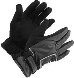 Thinsulate Style Water Resistant Winter Gloves
