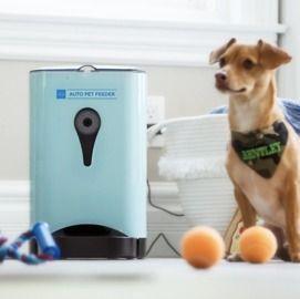 4.5L Smart Automatic Pet Feeder w/ Camera