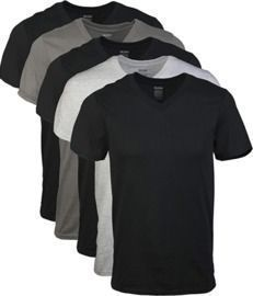 5-Pack Gildan Men's Assorted V-Neck T-Shirts