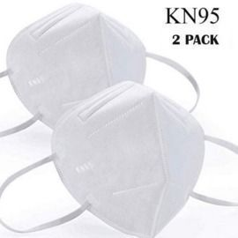 2 Pack of KN95 Masks