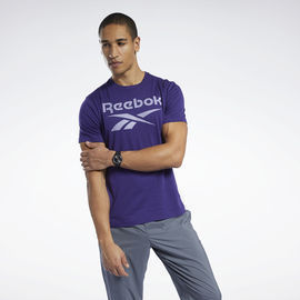 Reebok Men's Graphic Series Stacked Tee