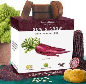 Nature's Blossom Exotic Vegetables Growing Kit