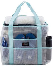 Holly LifePro Mesh Beach Bag