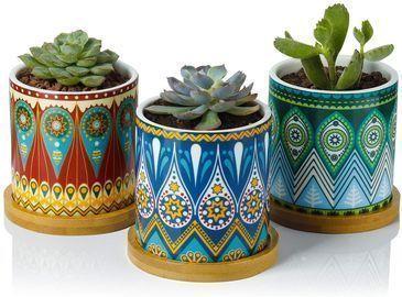 Greenaholics Succulent Plant Pot 3-Pack