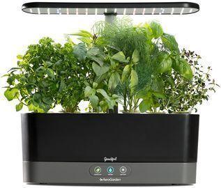 AeroGarden Goodful Harvest Slim Countertop Herb Garden with Gourmet Herbs Seed Kit