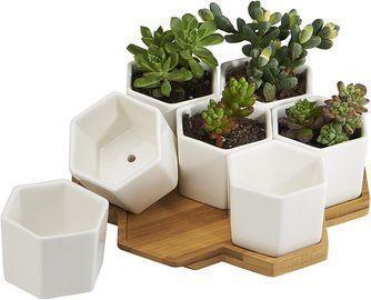 7 Pack 2.75 White Ceramic Hex Succulent Cactus Flower Plant Pots