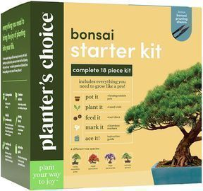 Planter's Choice Bonsai Starter Kit