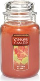 Amazon - Up to 25% Off Select Yankee Candles