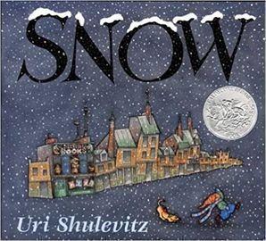 Snow (Sunburst Books) Paperback