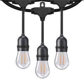Honeywell 48' LED Dual Filament Vintage String Lights