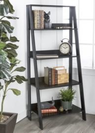 Langley Street Imogen Ladder Bookcase