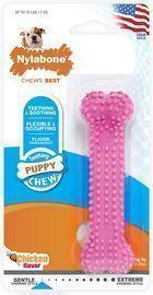 Nylabone Chew Toy