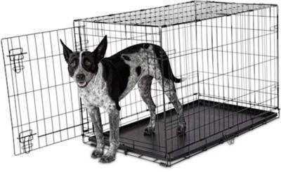 Animaze 1-Door Folding Dog Crate, 36.5 L x 23.2 W x 24.7 H