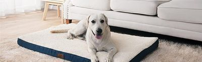 Orthopedic Egg-Crate Foam Dog Bed