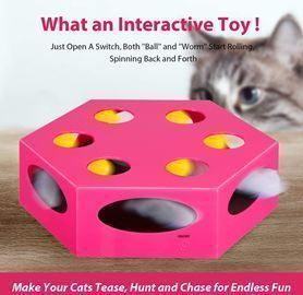 Interactive Electronic Cat Toy