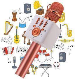 Karaoke Wireless Microphone