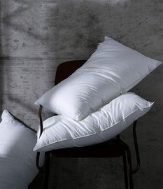 2 pack 100% Egyptian Cotton Pillows