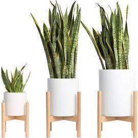 Mid-Century Plant Stand - Set of 3