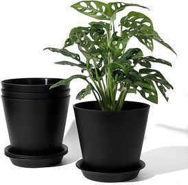 Plastic Indoor Planters -Set of 4