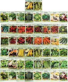 Black Duck Brand Assorted Heirloom Vegetable & Herb Seeds 50-Pack