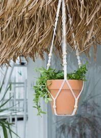 Plant Hangers 35 Inch