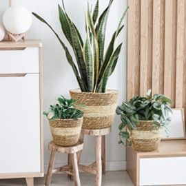 Seagrass Planter Basket - Set of 3