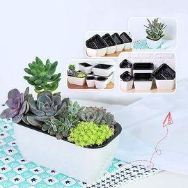 6 Pack Self Watering Planter African Violet Pots