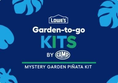 Lowes - Free Mystery Garden Pinata Kit