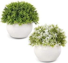 Artificial Mini Potted Plants - 2pk