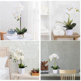 Artificial Orchids with Pot