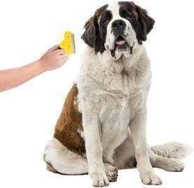 Pet Grooming Deshedding Tool