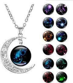 Sterling Silver Horoscope Zodiac 12 Constellation Pendant Necklace