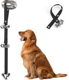 Dog Training Doorbells