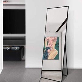 65x22 Full Length Mirror