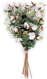 Amazon - Cotton Stems with Eucalyptus Leaves - 6pk $9.49