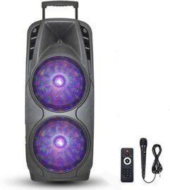 Karaoke Machine with Dual 10 Woofer