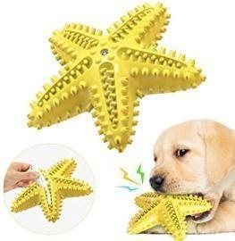 Starfish Dog Toy