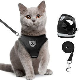 Pet Harnesses with Leash Set