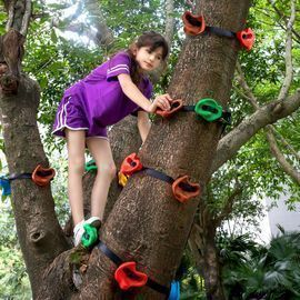 12 Ninja Tree Climbing Holds