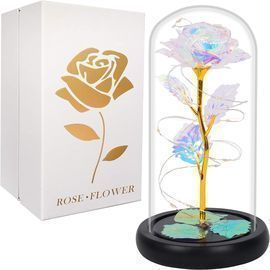 LED Light Galaxy Rose in Glass Dome