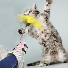 Interactive Stick Cat Toy with Feathers