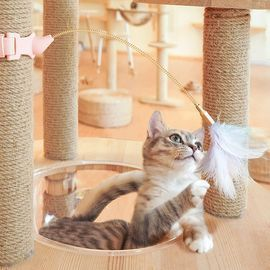 Interactive Cat Feather Toys