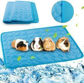 Cool Mat for Small animals