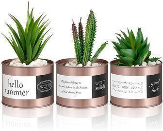 Artificial Plant Cactus Succulent