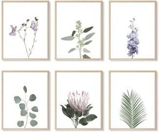 Set of 6 Botanical Prints and Floral Wall Art