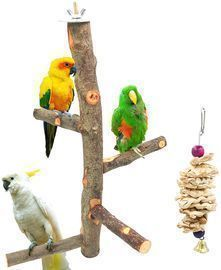 Bird Perch Wood Stand
