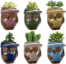Ceramic Owl Small Pots- Pack of 6