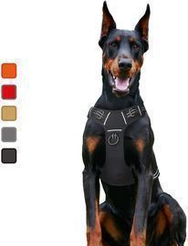 No-Pull Dog Harness