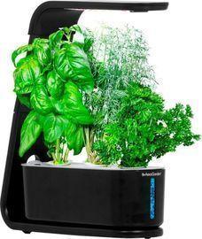 AeroGarden Sprout 3-Pod Indoor Garden w/ Herb Pods
